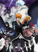 Аниме картинка Bleach: The DiamondDust Rebellion [Movie-2] , Блич [Фильм-2], Gekijouban Bleach: The DiamondDust Rebellion Mouhitotsu no Hyourinmaru