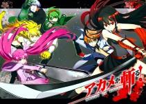 Аниме картинка Akame ga KILL!. Akame ga Kiru!. Убийца Акаме!