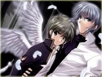 Аниме картинка Angel`s Feather. . Перо Ангела